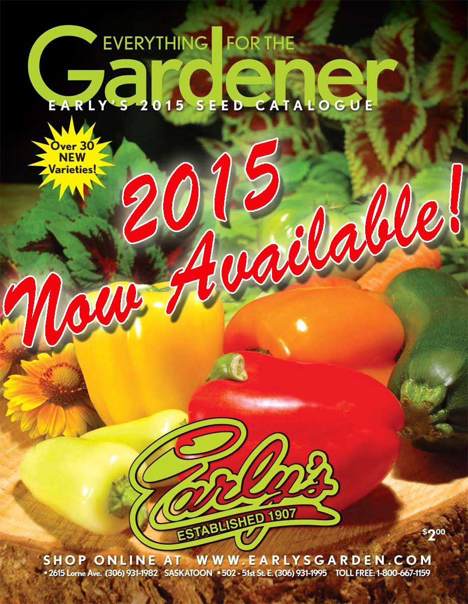 cover 2015 now available