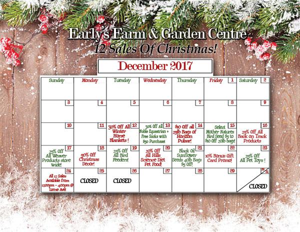 12 Sales Calendar Small