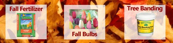 Fall Newsletter Banner