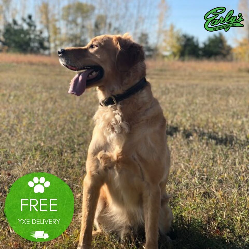 facebook free pet delivery